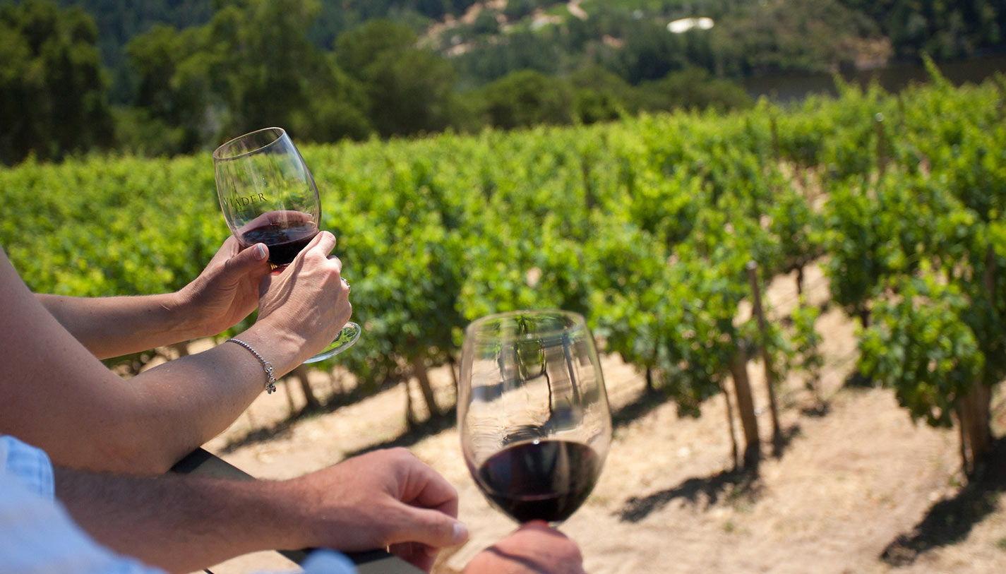 Wine-Tasting-Tour-20
